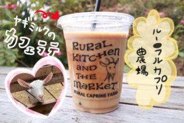 【ルーラルカプリ農場】岡山市東区の可愛い『ヤギ』と触れ合えるスポット!普段味わえない『ヤギミルク』を使ったスイーツを食べてきました。