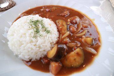 【カフェスペランツァ】岡山市北区青江の500円で食べれる週替わりカレーランチでお腹いっぱいに!