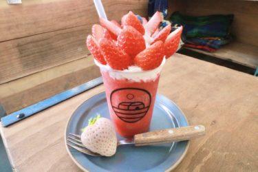 【more fruits(モアフル)】こだわりフルーツがたっぷりと乗ったパフェ&ドリンクが超インスタ映えする!とSNSでも話題に!?今が旬の苺を使った贅沢パフェを堪能してきました。