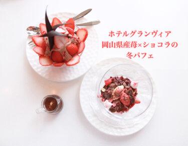 【ホテルグランヴィア|ルミエール】1日20食限定!2段のパフェが映える!岡山県産イチゴをたっぷり使った超贅沢冬パフェ。ちょっとお得に食べれる方法も公開。