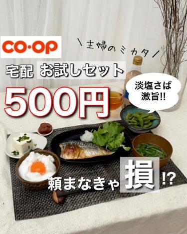『淡塩さば』マジで食べて欲しい!コープの宅配おためしセットが500円(送料込)で試せちゃう!